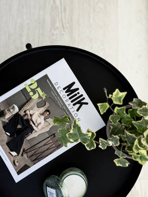 Plant and newspaper