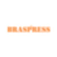 Braspress.png
