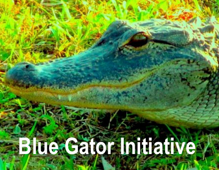 """Come join the Blue Gators to """"Get out the Vote"""""""