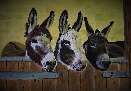 The 3 Donkey's.jpg