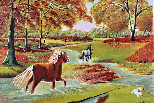 New Forest Ponies & Westie - PRINT