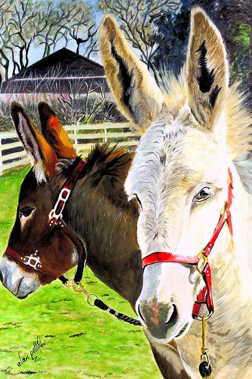 Donkey Surprise