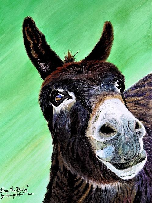 Steve The Donkey