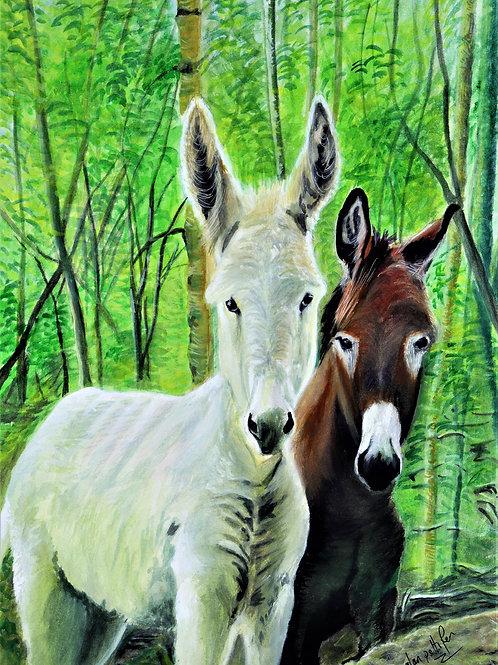 Two Donkeys - PRINT