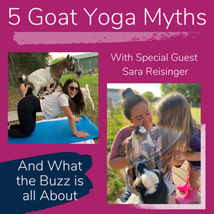 5 Biggest Goat Yoga Myths and Why You Should Try it ASAP