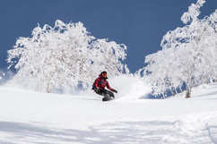 JAPOW SnowBoarders paradise in Niseko