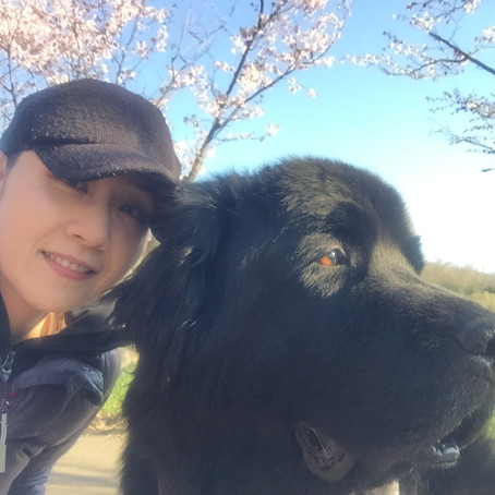 Introducing SnowDog Village's new General Manager Rena Okino!