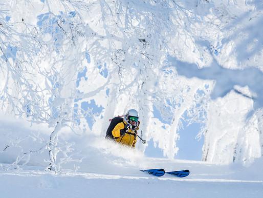 Snow Report Niseko