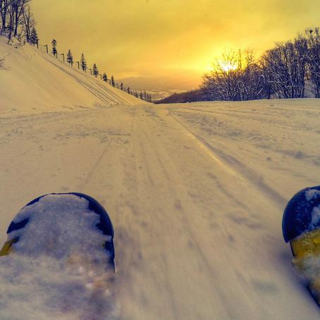 December 2020 Newsletter - Happy Holidays from us all at SnowDog Village!