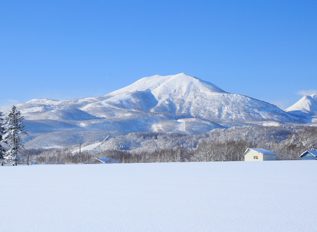 Fat-Cats, Hotel Groups, Investors - All Eyeing the 'Aspen of Asia': Niseko