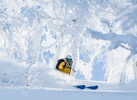 Niseko- For Mountain Lovers, Skiers & Investors Alike