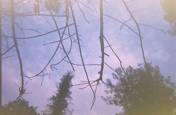 Old Disposables (29).tif
