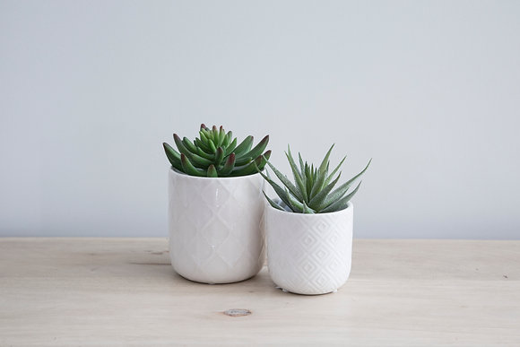 Diamond Ceramic Planter