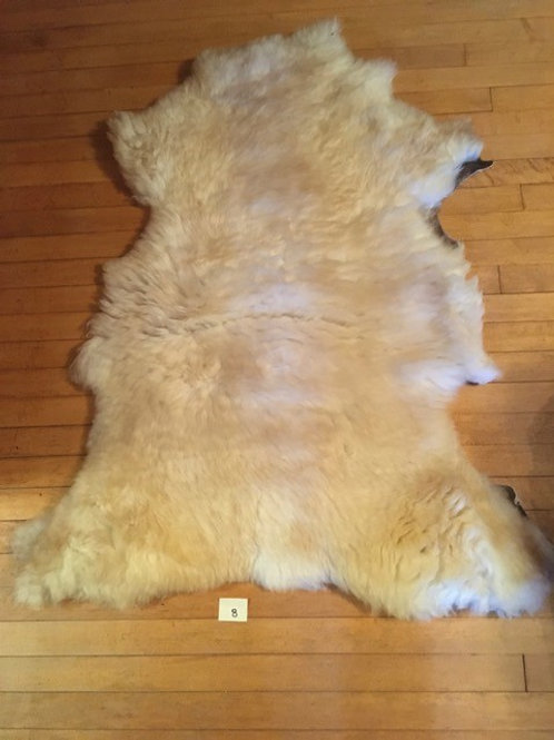 Thick Tan-White Suffolk Sheep Skin