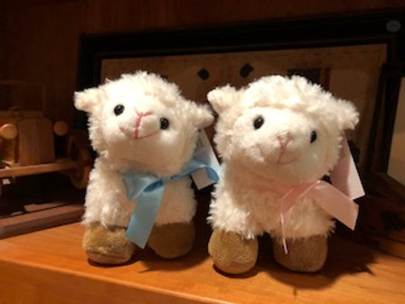Small lamb with Pink or Blue Bow
