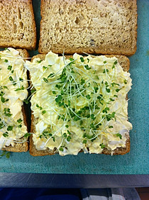 simple but classic egg mayo & cress