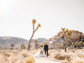 Carmen & John - Joshua Tree, CA
