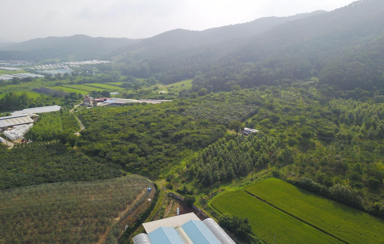 진천농장, 2017년 8월