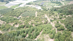 진천농장, 2018년 6월