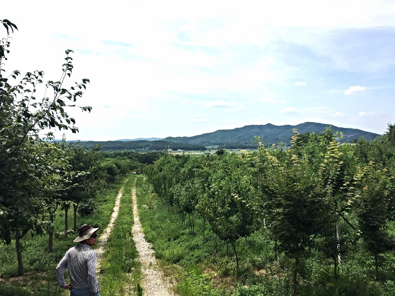 여주농장, 2016년 6월