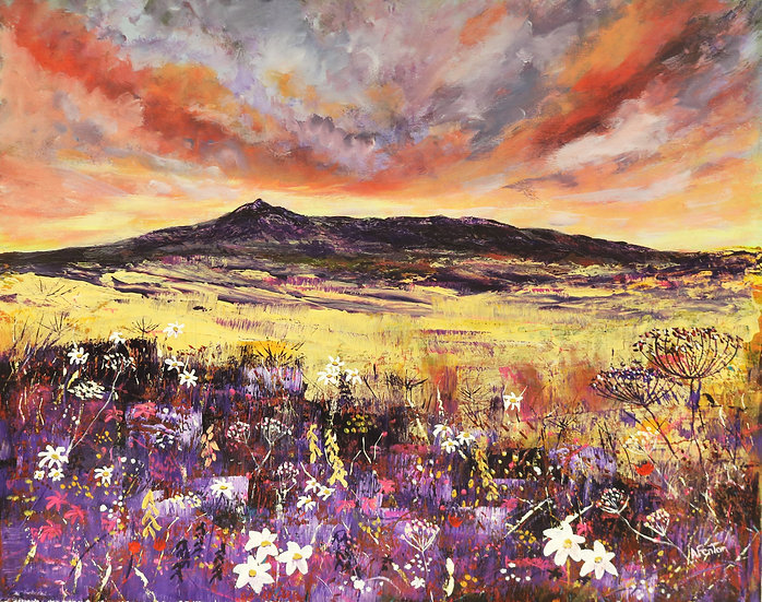 'Bennachie & Wildflowers' Anne Fenton