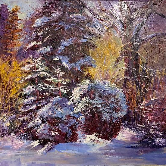 'The Colour of Winter' Myrtle Watt