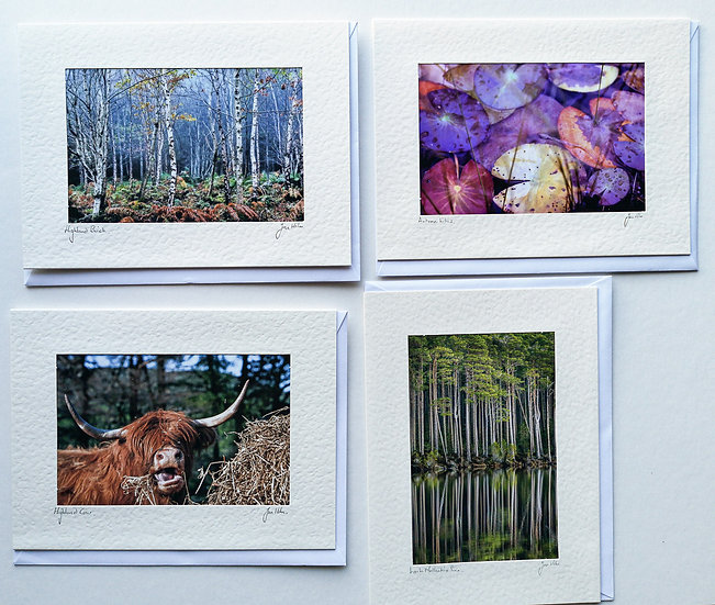 'Nature Cards Pack of 4' Jan Holm