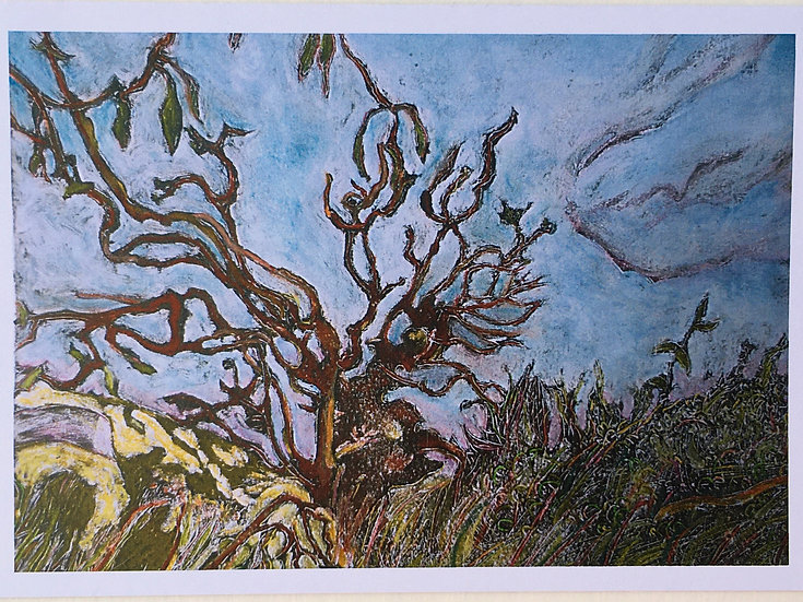 'Trees on the Edge Cards 5 Pack' Anna Sedgwick