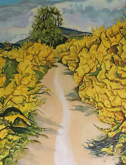 'The Deeside Way at Dinnet' Anna Sedgwick
