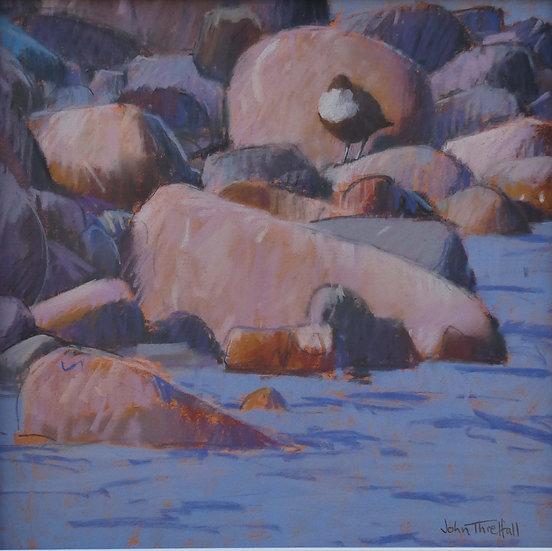 'Dipper on the Dee' John Threlfall