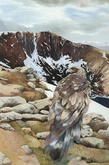 ' Eagle Ridge lochnagar ' Ann Madden