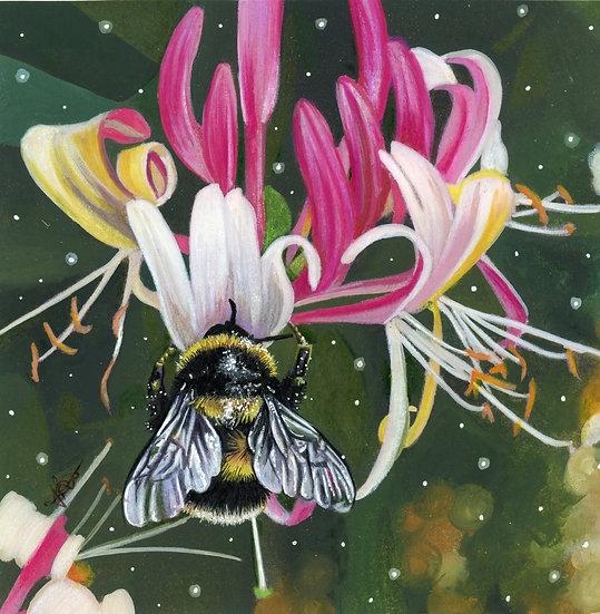 'Honeysuckle Nectar' - Jodie Bews