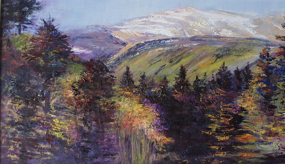 'Southern Cairngorms, Braemar'  Myrtle Watt
