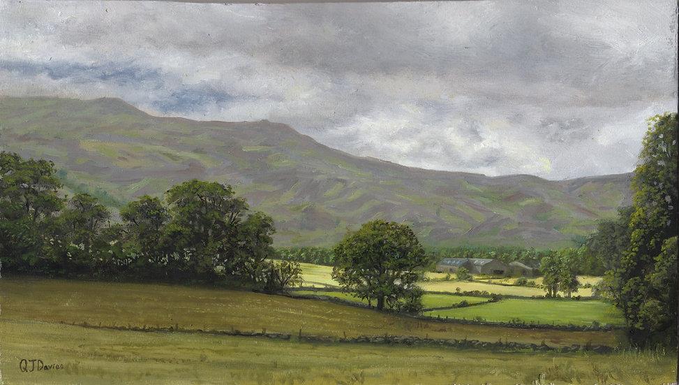 'Morven and Galton Farm' Quintin Davies