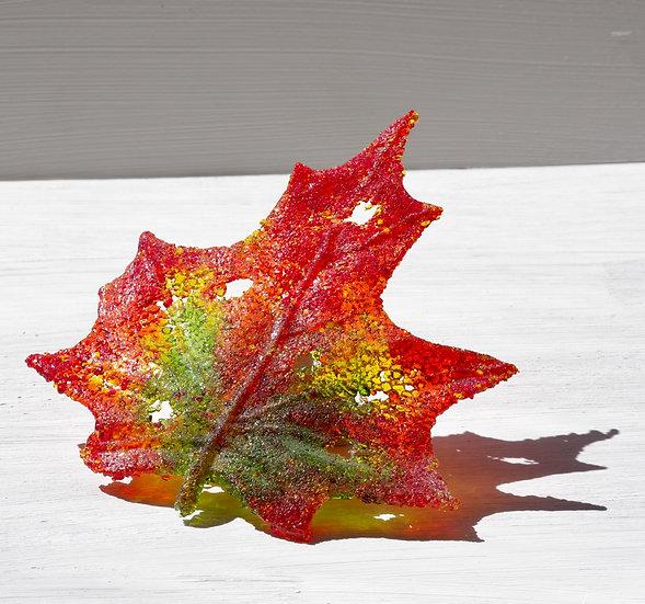 Maple Leaf -Ashley Brammer