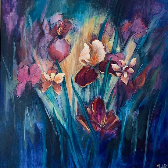 'A Field of Iris;   Myrtle Watt