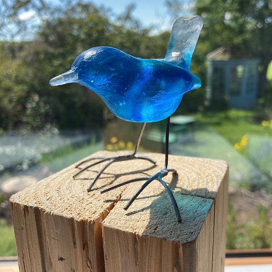 'Little Blue Wren' Ashley Brammer