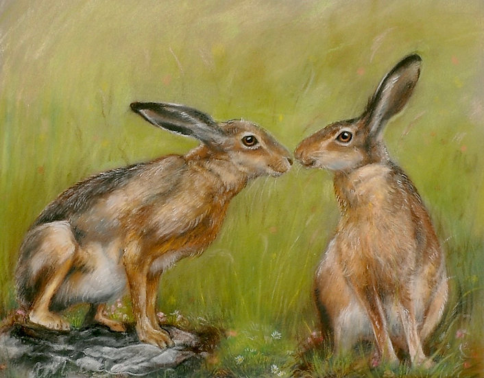 'Love is in the Hare' Amy Millar