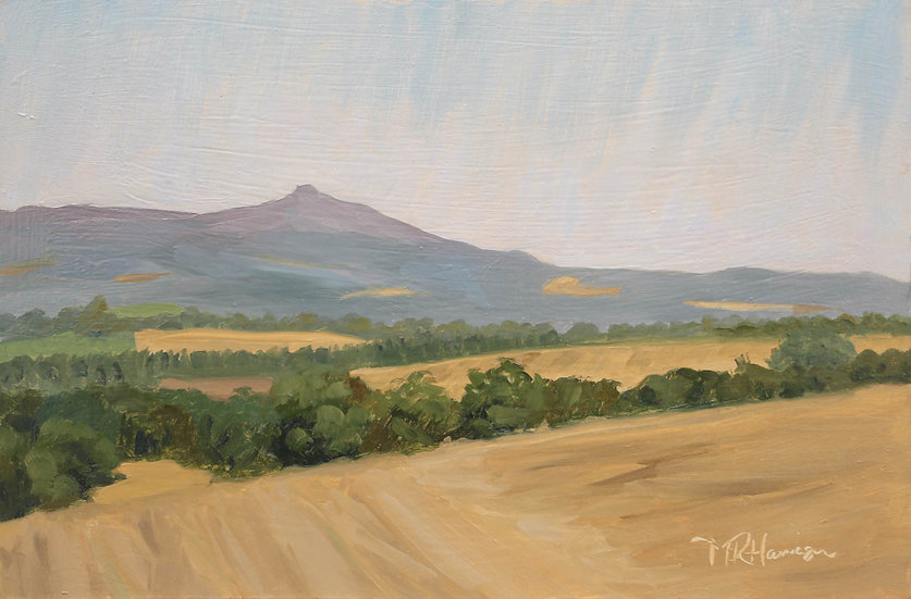 """Hazy morning light on Bennachie"" Melanie Harrison"