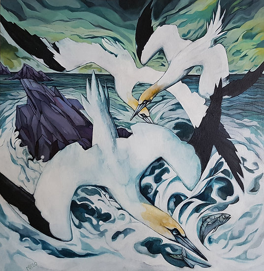 'Diving Gannets' Mandy Henderson
