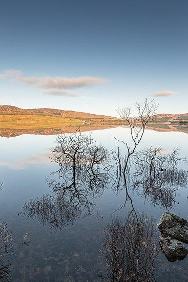 'Clatteringshaws Loch' Jan Holm