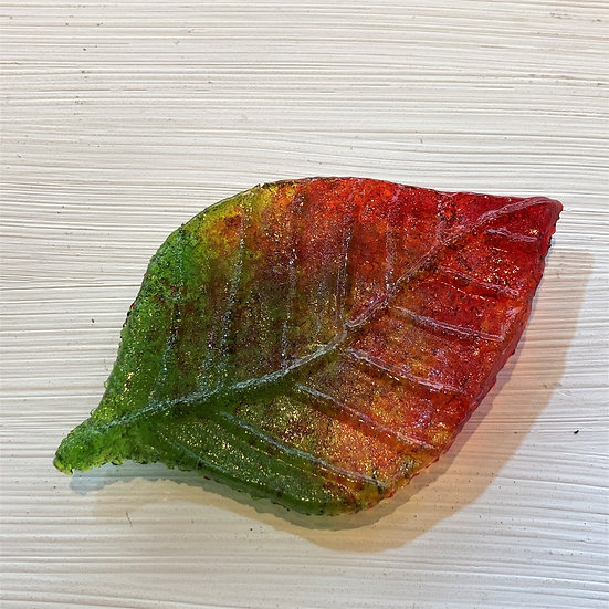 Fine Beech Leaf - Ashley Brammer