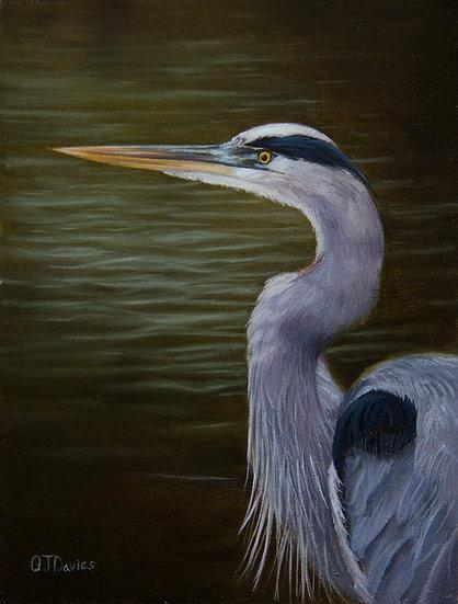 'Grey Heron' Quintin Davies