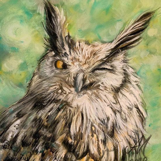 'Winking Owl' Amy Millar