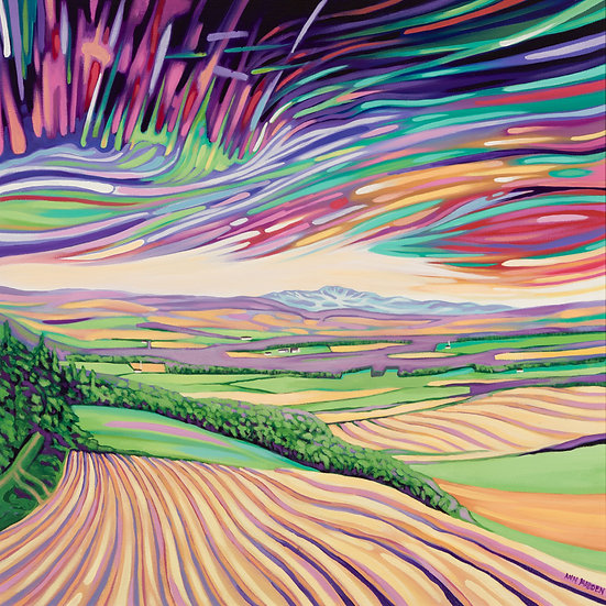 'Aurora over Queen's view '  Ann Madden'