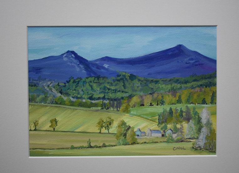 """Four Seasons on Bennachie - Summer"" Christine McLennan"
