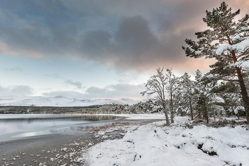 'Loch Morlich, Cairngorms' Jan Holm