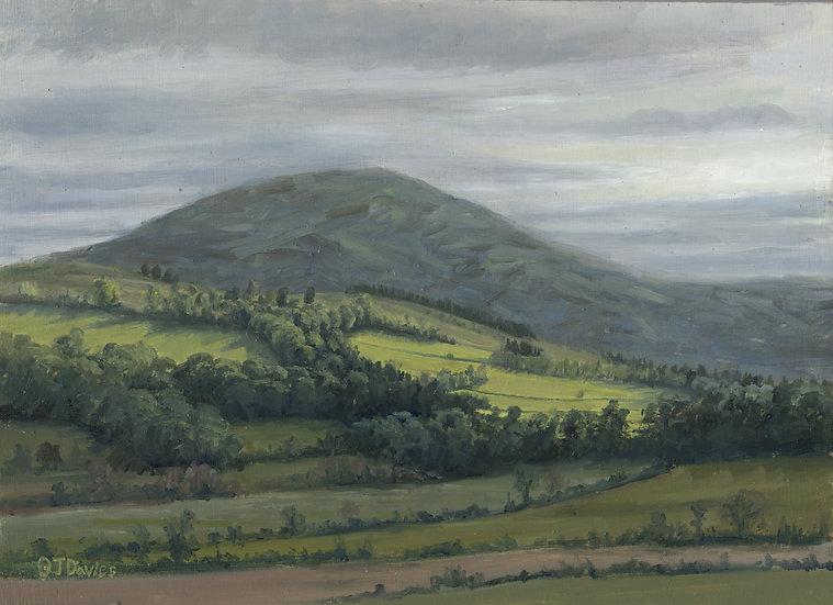 'Low Light Over Cromar' Quintin Davies