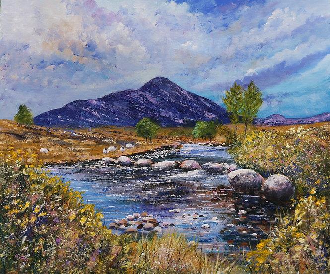 'Up The Balgy', Torridon' Anne Fenton