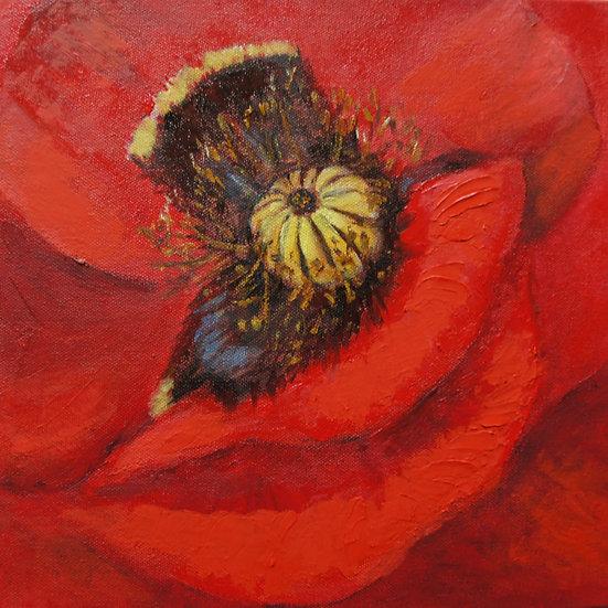 'Propagation in Red'  Myrtle Watt